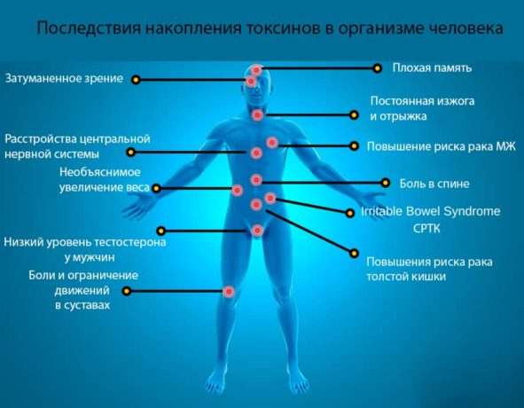 Негативное воздействие токсинов на организм человека