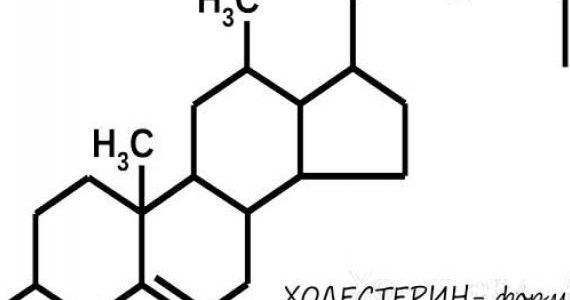 Что такое холестерин и почему он повышается?